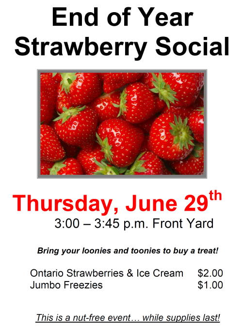 strawberry social poster image cropped.png